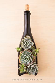 I love the design of this wine bottle planter with succulents! bottle crafts plants DIY Wine Bottle Planter for Succulents Liquor Bottle Crafts, Diy Bottle, Bottle Art, Vodka Bottle, Beer Bottle, Wine Bottle Planter, Bottle Garden, Cutting Wine Bottles, Painted Wine Bottles
