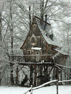 Tree house in winter Limousin, Witch Cottage, Arch Architecture, Cool Tree Houses, Orcas Island, In The Tree, Cabins In The Woods, Play Houses, Fairy Houses