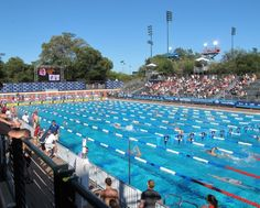 stanford university's pool