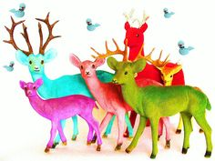 Somewhere Over the Reindeer by judibird on Flickr.