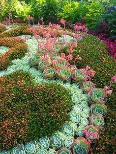succulent mosaic