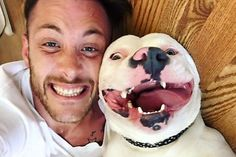 [Photos] Guy Posts Selfie With His Dog And People Instantly Call 911 Cork Board Projects, Dark Fruit Cake Recipe, Kremlin Palace, Cute Funny Dogs, Faux Painting, Teeth Cleaning, Natural Texture, Modern Rustic, Your Pet