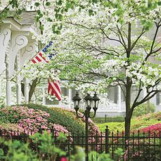 Madison is in bloom!  Make plans to attend our Spring Tour of Homes - April 30, May 1, and May 2!