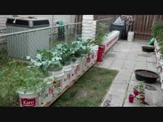 Check out our Self Watering Rain Gutter Grow System Group Page! Gutter Garden, Kiddie Pool, Bottle Garden, Self Watering, Irrigation, Hydroponics, Tiny Homes, Garden Inspiration, Container Gardening