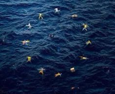 Banksy's macabre depiction of the E.U. flag, with stars instead displayed as migrant bodies floating on an ocean
