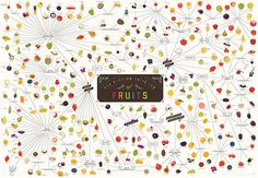 1 | Infographic: Over 300 Fruits On One Mouthwatering Map | Co.Design: business + innovation + design