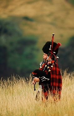 Piper in field. I have no idea why this guy is marching through a field (maybe he's getting some last minute practice in before an event), but I really love the image. Very nice use of depth of field.