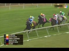 2014 First Lady Stakes