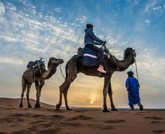 Gold Sand Camp Merzouga Morocco