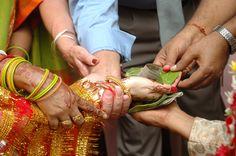 Free Telugu Brahmini Niyogi Matrimony Profiles: Jonnalagadda Jyothi