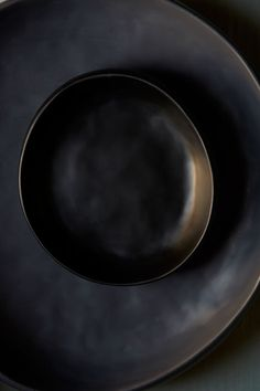 dinosaurdesigns-earth-33.jpg