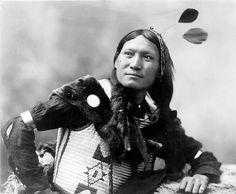 Sunflower, Dakota Sioux, by Heyn Photo, ca. 1899  Sunflower. Half-length portrait of Sioux(?) man, facing left, wearing native dress. Copyright 1899