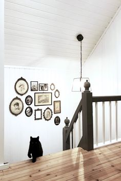 Landlig interiør, bildevegg, gammel, grå malt trapp, gang,  katt, country house, interior, foto wall, grey painted stairs, hallway, cat Gallery Wall, Stairs, Home Decor, Stairway, Decoration Home, Room Decor, Staircases, Home Interior Design, Ladders
