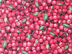 Fabri-Quilt - Paintbrush Studio 'Farmer John Organics'