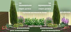 Отвечаем на вопросы, где разместить цветник и какие растения посадить, чтобы с весны до осени любоваться пышным цветением.