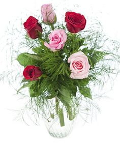 VALENTINE'S DAY - Medley 6 Pink and R... for only $34.99