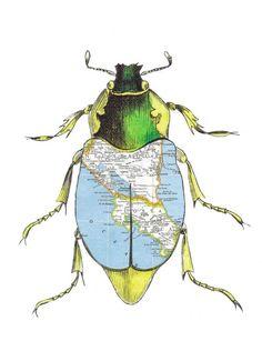 Original Collage Beetle Bug Art Paper Map Art Buggy by dadadreams