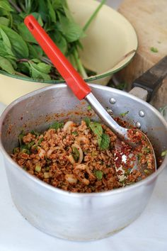 Authentic Thai pork larb