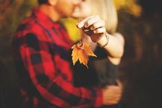 Autumn engagement love couples kiss outdoors autumn ring leaves