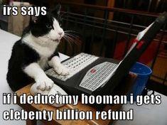 IRS says if i deduct my hooman i gets elebenty billion refund