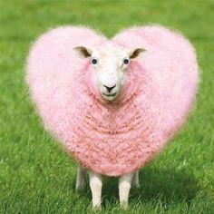valentines sheep - Google-Suche