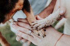 Dog engagement photos spring