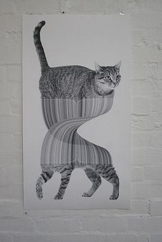 Drawing by artist Jonathan Zawada. Artwork from. Art And Illustration, Illustrations, I Love Cats, Crazy Cats, Street Art, Photo Chat, Art Graphique, Grafik Design, Art Design