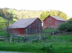 Old barns... Old barns... Old barns...