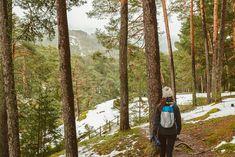 La naturaleza salvaje de la Sierra de Madrid tiene infinidad de actividades que ofrecer. Sierra, Travel, Clever, Women, Business, Highlands Scotland, Trees And Shrubs, Wild Nature, Paths