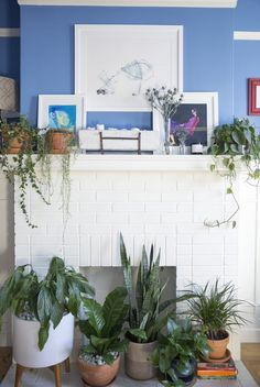 love the placement of plants on the mantle