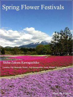 PANTIP.COM : E12284386 [CR].... ญี่ปุ่น....JAPAN ..KAWAGUCHIKO ..FUJI ..SHIBAZAKURA ..โรงแรม TOMINOKO ลาก่อน HOKKAIDO [บันทึกนักเดินทาง]