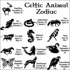 Celtic zodiac