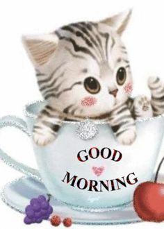 GOOD MORNING!! ♡♥️♡