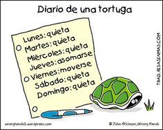 Diario de una tortuga