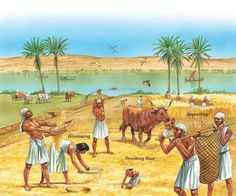 History of ancient Egypt - Q-files Encyclopedia