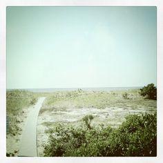 Cape Cod beach path