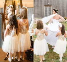 Fashion Wedding Flower Girl Dresses with Sparkly Gold Sequins Knee Length Chiffon Cross Back A-line 2016 Cheap Baby Kids Party Pageant Dress Online with $59.36/Piece on Sweet-life's Store | DHgate.com