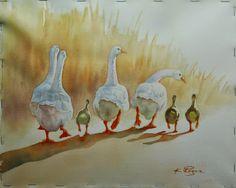 Studio at the Farm Bird Illustration, Botanical Illustration, Watercolor Illustration, Illustrations, Watercolor Bird, Watercolor Animals, Watercolor Paintings, Duck Art, Dragonfly Art