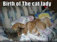 Birth of the cat lady