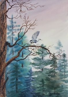 Heron In The Pines by Deb Groesser Watercolor ~  x