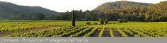 Correns 1er village bio - Vue du Domaine des Aspras #vin #wine