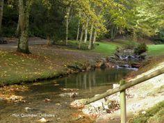 Le Jardin du Conservatoire Botanique de Brest | Finistère Bretagne