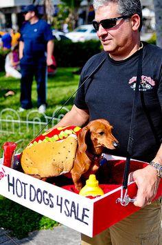 hot dog seller costume