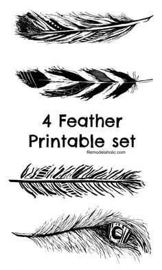 set of 4 Free Hand Drawn Feather Printables in Black, Nave and Turquoise @remodelaholic