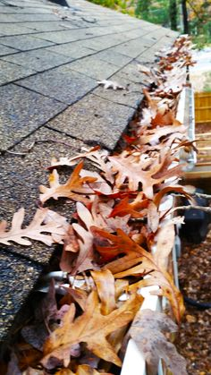 Here are some Tips for Preserving Gutters. https://goo.gl/7qWfJP | But if you need a professional to help you, visit https://goo.gl/KEQXdG and get your free quote now.