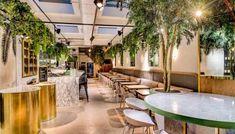 13 Amazing Treehouse Holidays With a Hot Tub in the UK [2021] Pine Restaurant, Restaurant Design, Luxury Restaurant, Restaurant Ideas, Red Roaster, Brighton Restaurants, Australian Interior Design, Wallpaper Magazine, Hospitality Design