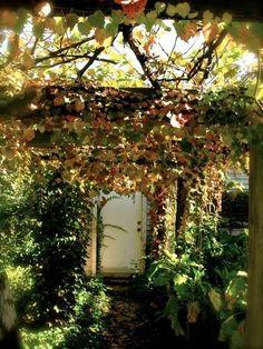 Katie's Secret Garden
