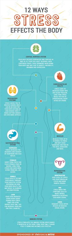 INFOGRAPHIC: Stress takes its toll on way more than your mind