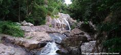 Hiking in Koh Samui is a great way to see untouched parts of the island. Lush…