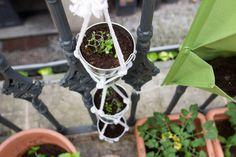 Vertikální zahrady neboli květiny, které jsou místo běžné výsadby vysázeny například na kolmých stěnách, začínají být čím dál více v kurzu. Důvodů je hned několik. Jelikož často žijeme v bytech ve městech s minimálním prostorem pro pěstování rostlin, hledáme elegantní řešení, jak stále zůstat obklopeni zelení, aniž bychom se při každém kroku zamotali do šlahounů filodendronu.
